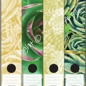 Succulents File Labels